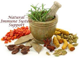 Natural Immune System Support