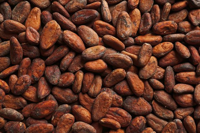 cacaoseco.jpg