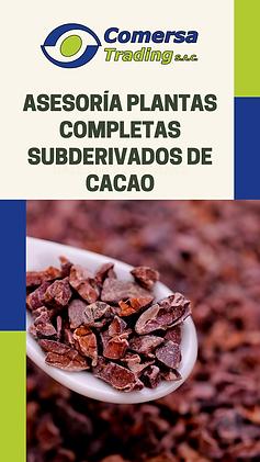 Asesorias subderivados cacao.png