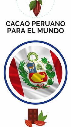 cacao peruano para el mundo.png