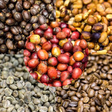 Granos de cafe.jpg