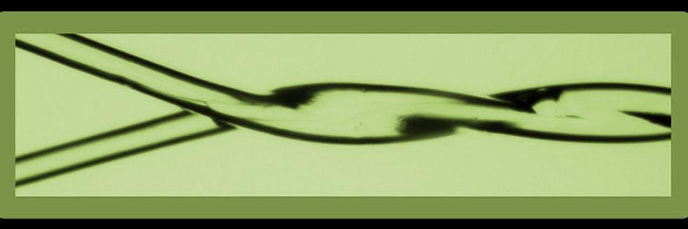 Helix - 1500x500twtr green.jpg