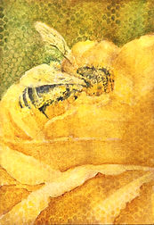 A Bee's World.Alaura Allen.jpg
