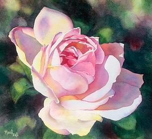 Rose Tinted View.jpeg