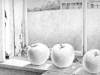 SnowFarm Apple Drawing 2 copy.jpg