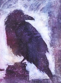 Yosemite Raven 1920.Sue Archer.jpg