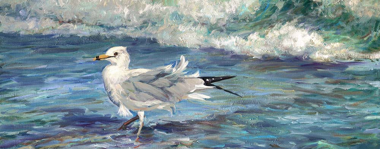 Breezy Day Seagull
