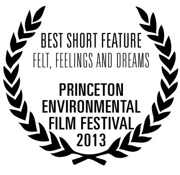 Best Short Feature Award.png