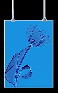 Lanuma_Homepage_Poster-2_edited.png