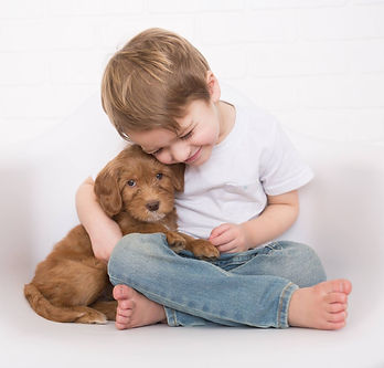 Little boy and puppy