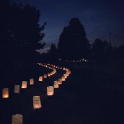 Luminary Walk ITTL 2014