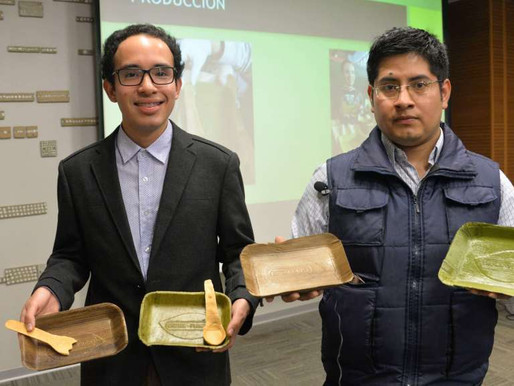 From discarded banana leaves to takeaway plates