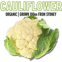 cauliflower panel.jpg