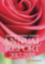positive women AR 2017-2018 cover.jpg