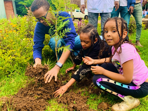 Ethiopia plants four billion trees over the summer