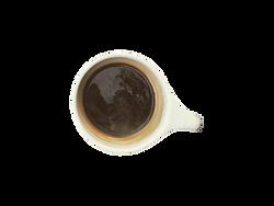 little guy coffee