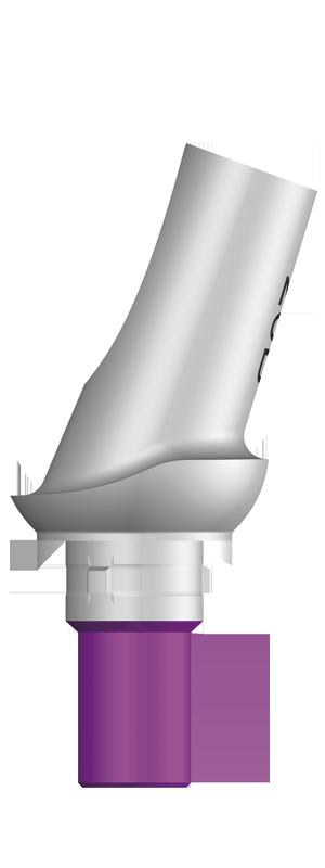 エソミックアバットメント 20°アングル タイプ B 1.0