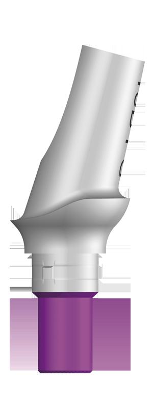 エソミックアバットメントPS 15°アングル タイプ B