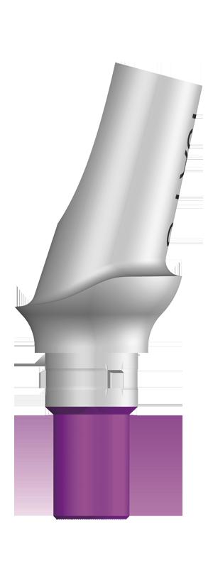 エソミックアバットメントPS 15°アングル タイプ A