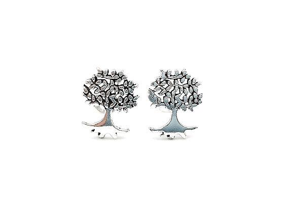 Mulberry Tree, Mulberry Tree Earrings, Silver Tree Earrings, Silver Tree Studs, Sterling Silver Mulberry Tree Earrings,