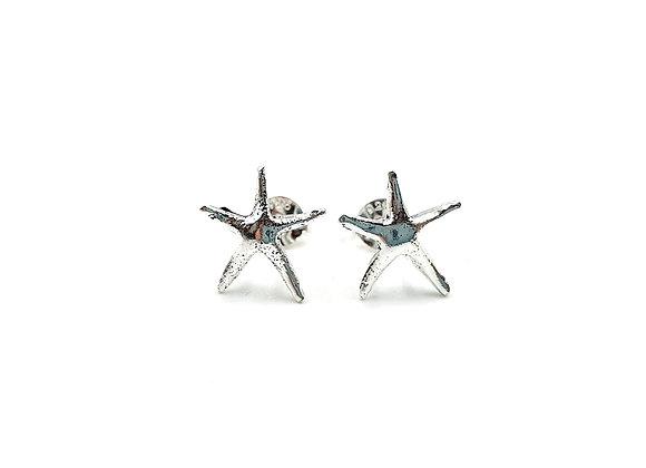 Sterling Silver Earrings, Star Fish, Star Fish Earrings, Silver Star Fish Earrings, Silver Star Fish Studs, Star Fish Studs