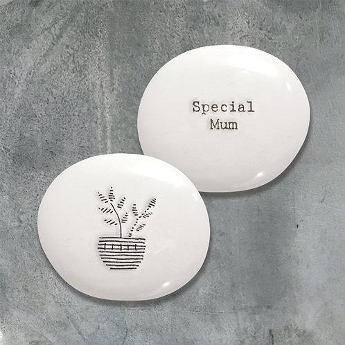 Special Mum Acorn Porcelain Positivity Pebble