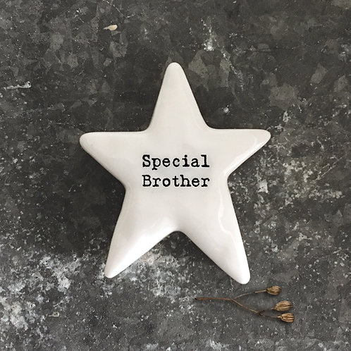 'Special Brother' Star Positivity Pebble