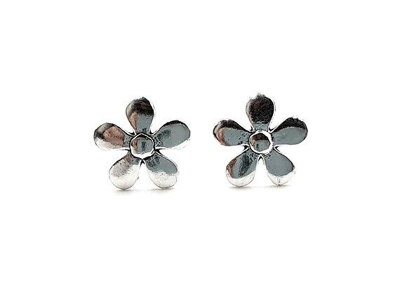 The Silver Daisy 925 Sterling Silver Stud Earrings