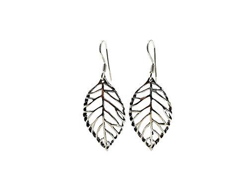 The Large Birch Leaf 925 Sterling Silver Drop Earrings