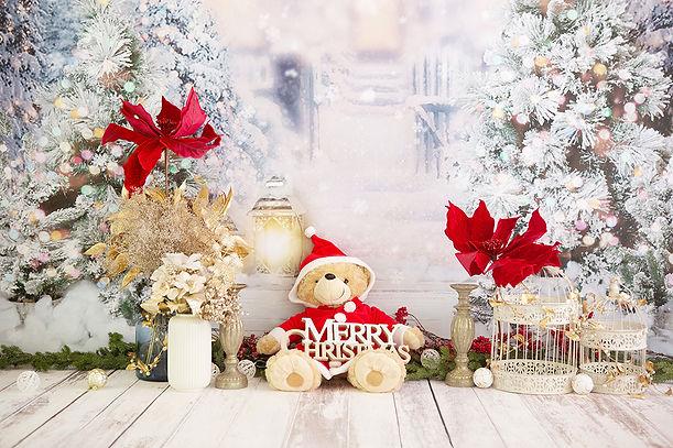 クリスマス 2.JPG