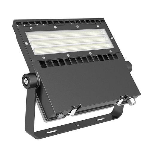 4350-100A FIELD LIGHT 100W Asymmetrisch