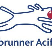 Debrunner Acifer.jpg