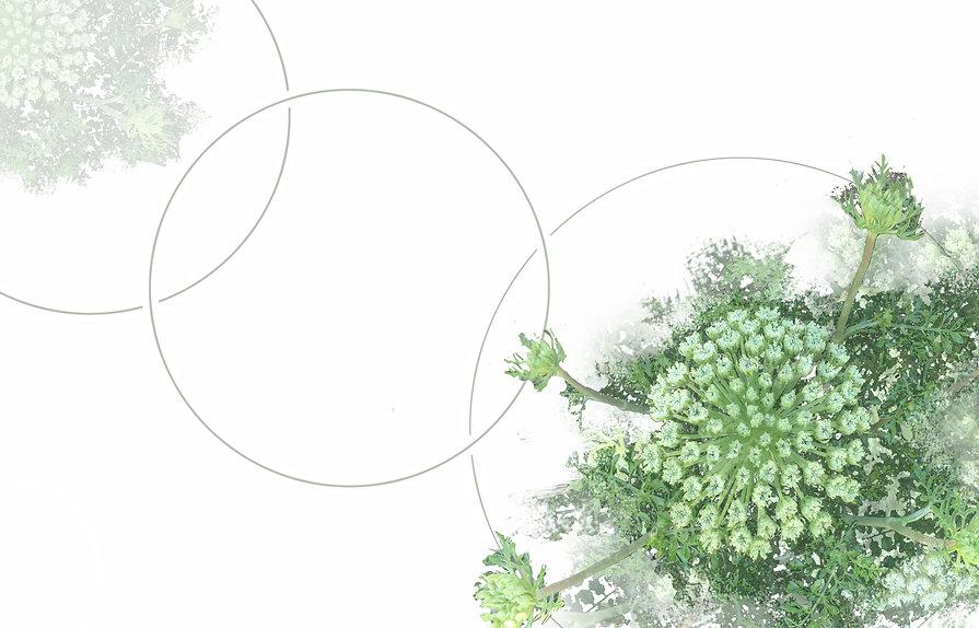 Naturopatie, énergétique, Yvelines