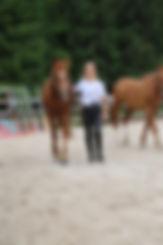 centre équestre, pension, chevaux, poneys, centre équestre, écurie, équitation, 68, France, Mortzwiller