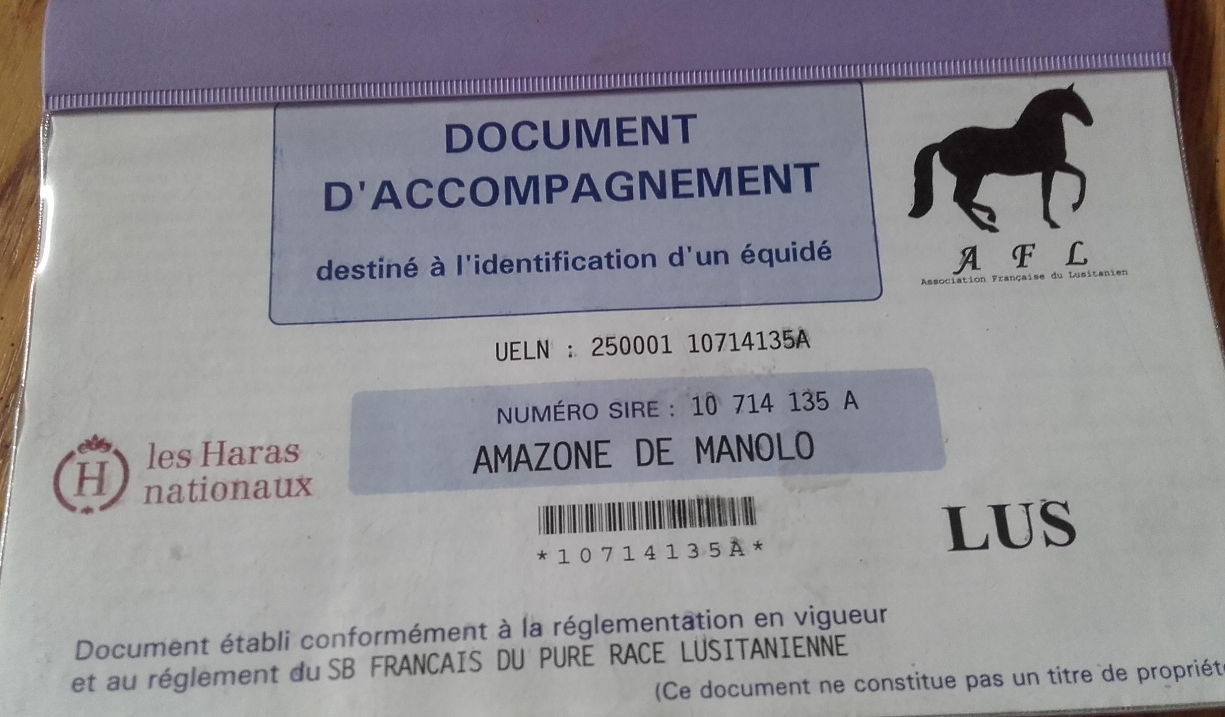 Amazone de Manolo