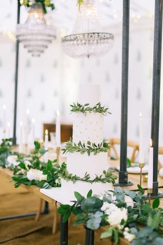 Camp Katur - Wedding Cake in the Raj Tent