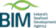 BIM Cromane SeaFest