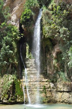 20110719-044-Israelstur.jpg
