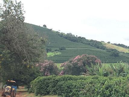 Vista da fazenda da serra cafezal