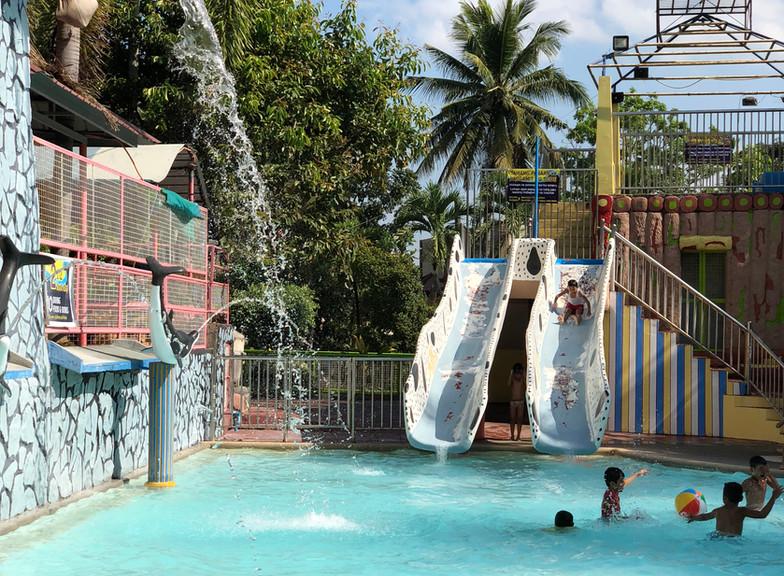 malamig park resort DOLPHIN POOL.jpg