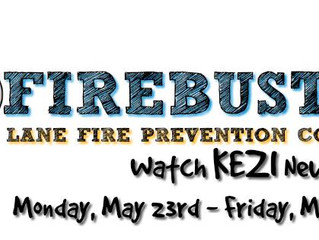 FIREBUSTERS is HERE