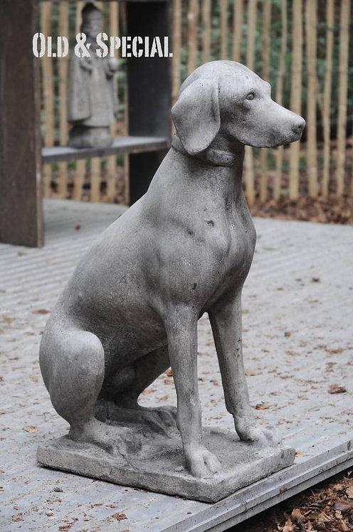 Stenen hond tuinbeeld