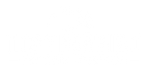 Polyvalvido Logo w.png