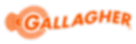 Gallagher Security Logo