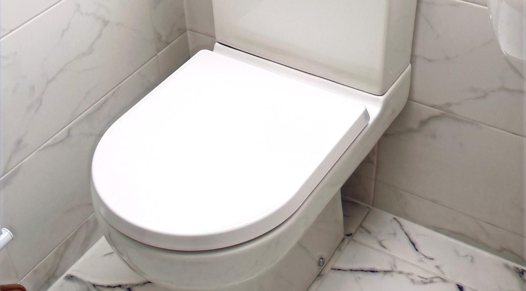 Cloakroom toilet tiling flooring