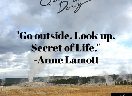 Quote of the Day: Secret of Life