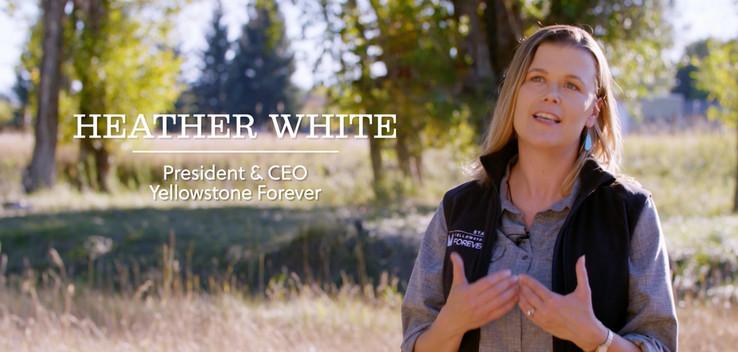 Compass Coalition: Yellowstone Partnerships