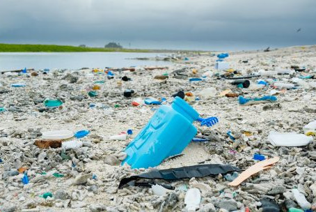 Breaking Free from the (Plastic!) Purple Rain: 3 Wins to Celebrate in the Plastic Pollution Fight