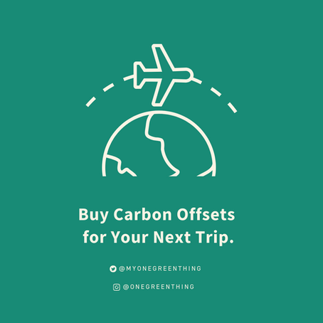 How to Buy Carbon Offsets for Your Next Trip