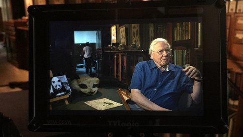 David Attenborough, Natural Curiosities for BBC4